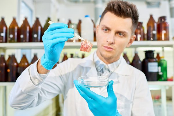 Handsome young researcher with stylish haircut wearing white coat and rubber gloves analyzing results of ambitious project concerning cultured meat creation, interior of modern lab on background