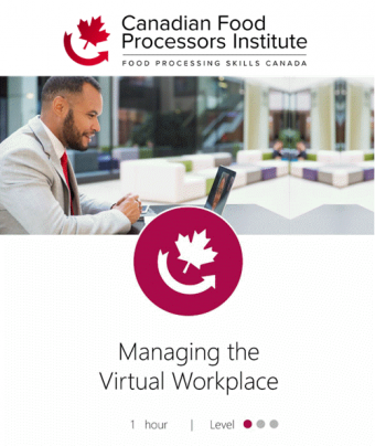 managing_the _virtual_workplace