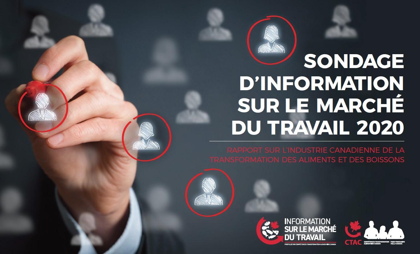 SONDAGE D'INFORMATION SUR LE MARCHÉ DU TRAVAIL 2020